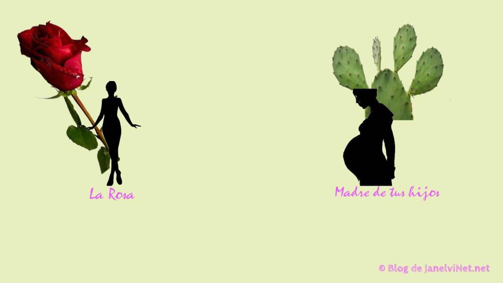 Reflexión: La Rosa y el Cáctus